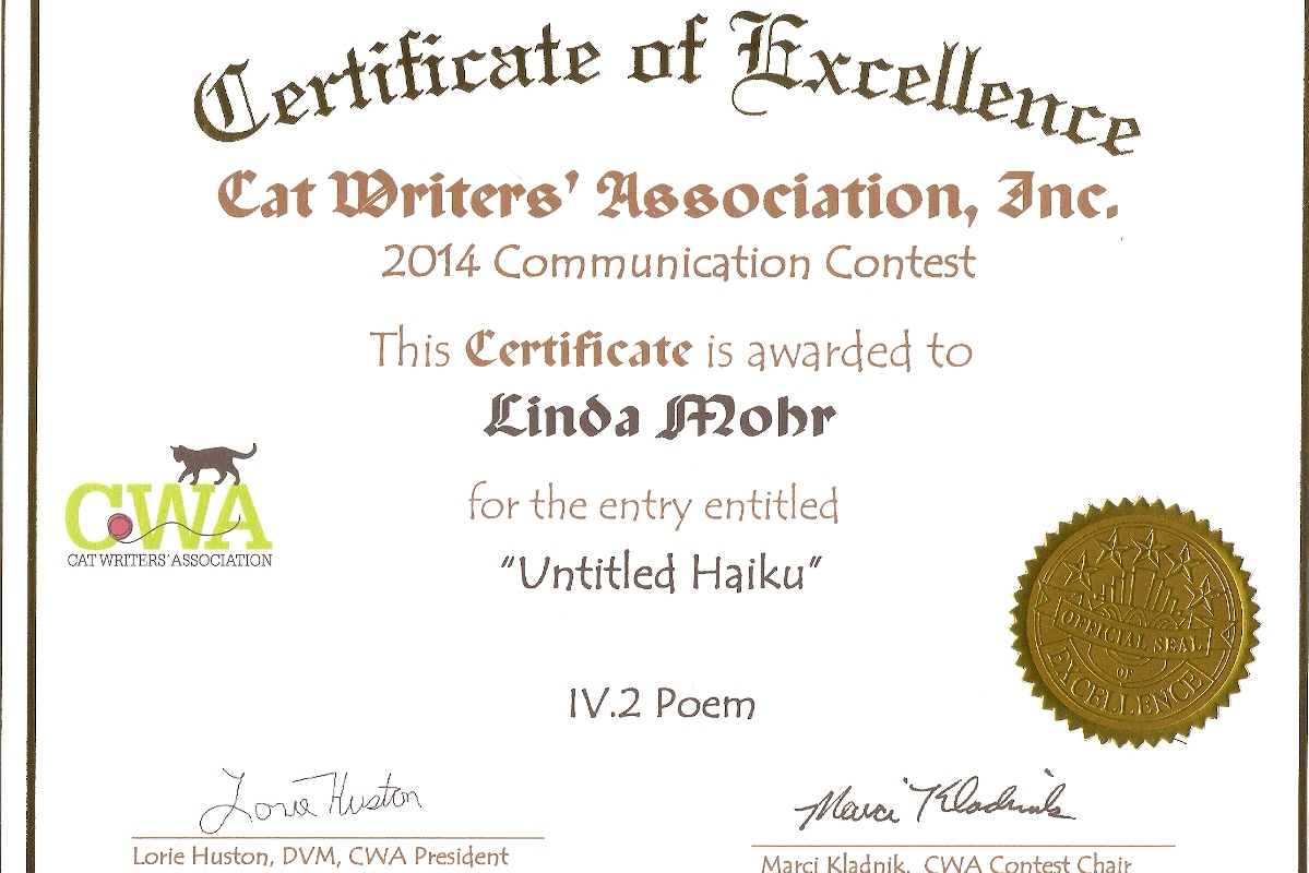certificate of excellence award
